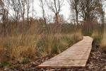 Vlonderpad, onderdeel van Het Laarzenpad door de Boswachterij Ruurlo.