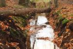 Waterafvoer in het Rabat Bos